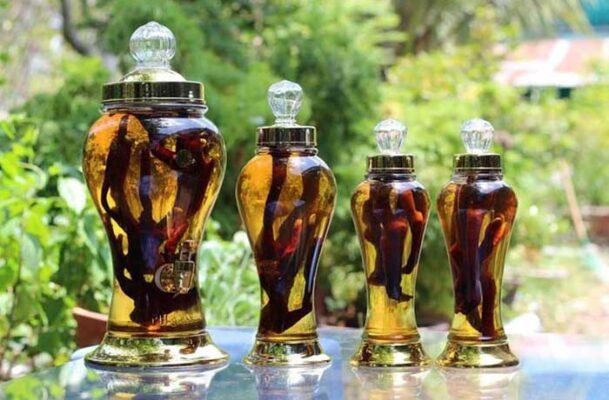 Rượu Thuốc Tăng Cường Sinh Lý Từ Bài Thuốc Dân Gian Dễ Tìm