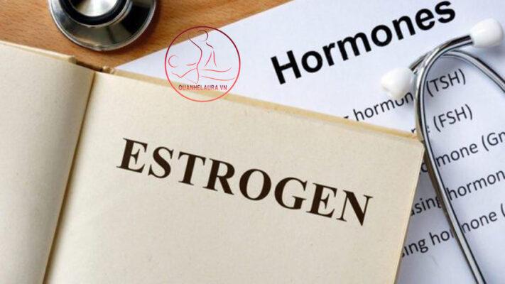2. Estrogen có vai trò gì?